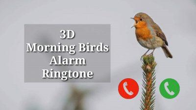 Birds Voice Alarm Ringtone Download