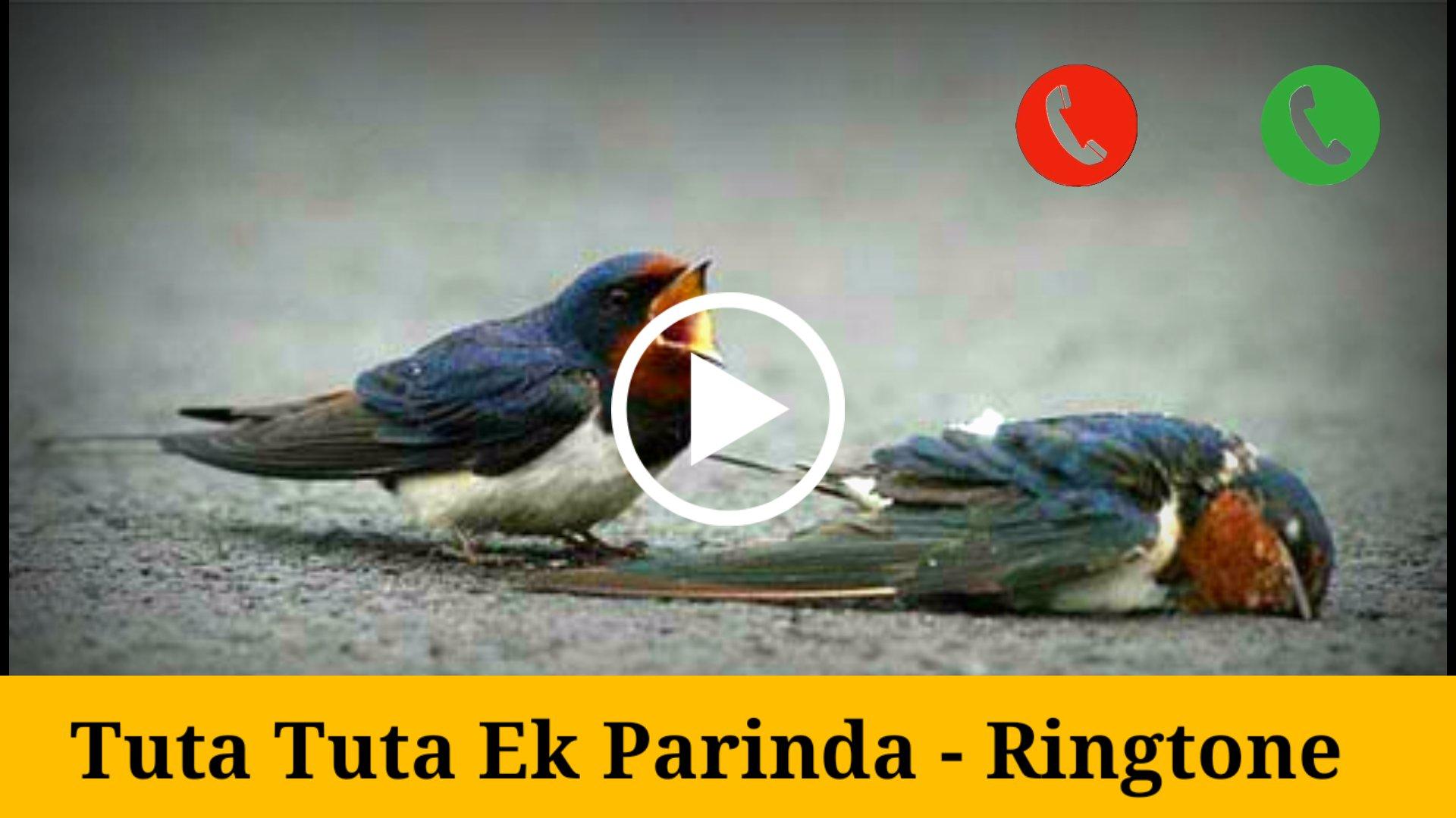 Tuta Tuta Ek Parinda mp3 ringtone download